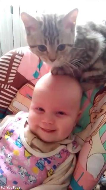 猫と赤ちゃん03