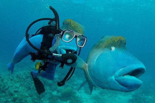 魚とプライスレスな写真04