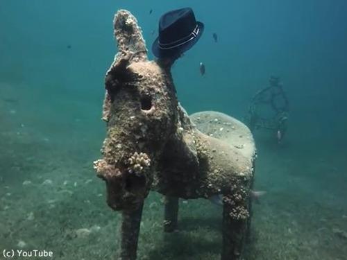 ダイバーが海底でロバの彫刻を発見00