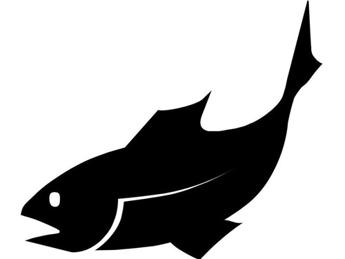 透明の魚00