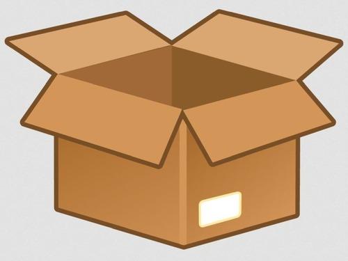 ダンボール箱をかぶって試験