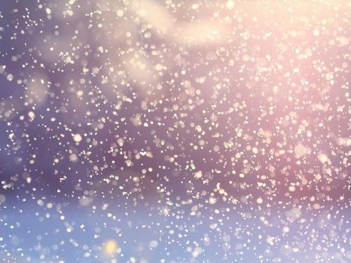 ニューヨーク州で記録的大雪