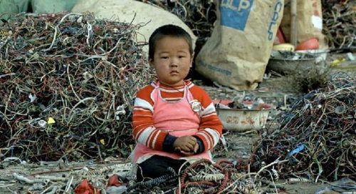 中国のもはや手に負えない公害12