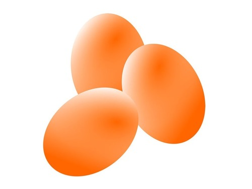 2500年前の卵が無傷で出土00