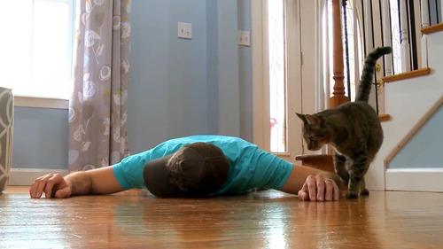 猫の前で死んだふり02