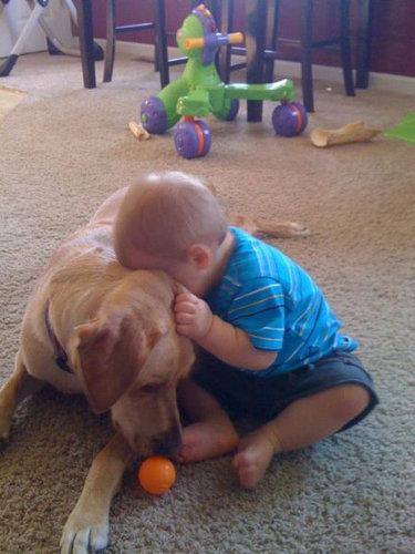息子と愛犬の友情09