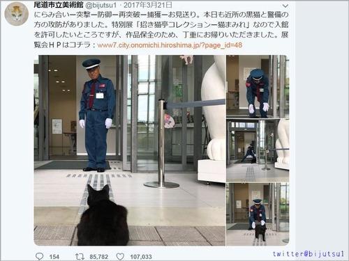 尾道市立美術館と猫00