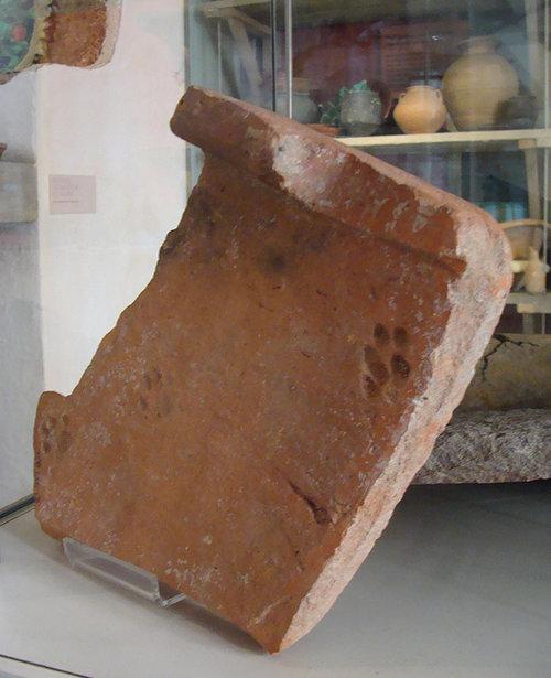 古代ローマの猫の足あと02