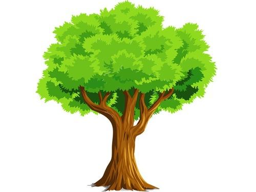 木に吸収されつつあるキリスト像