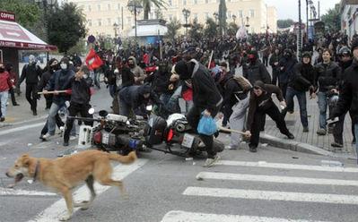ギリシャの暴動犬08
