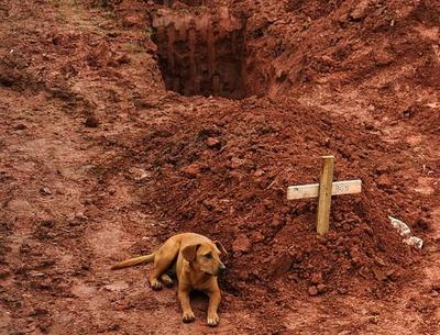 ブラジル洪水10
