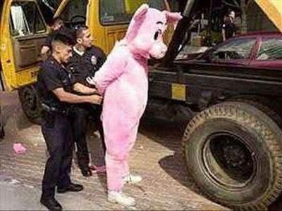 見たくない逮捕00