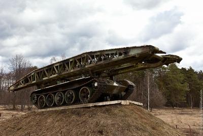 ロシアの森20