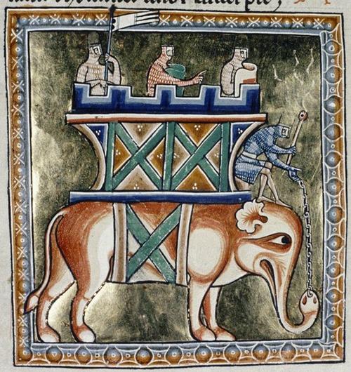 中世の想像で描かれたゾウ08