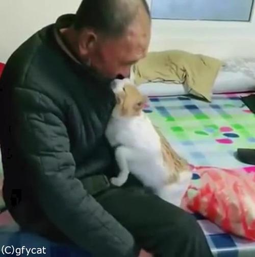 猫とおじいちゃん、とっても仲良し02