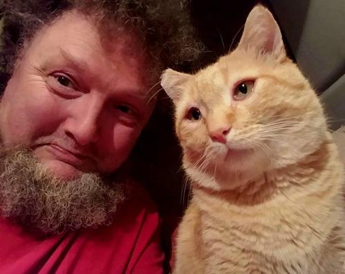 トラック運転手の猫が行方不明も意外な再会11