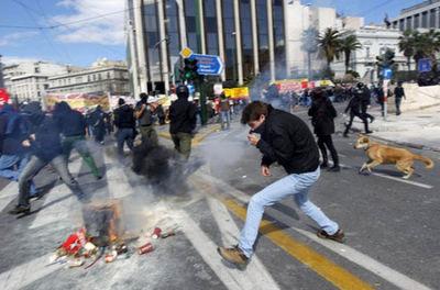 ギリシャの暴動犬10