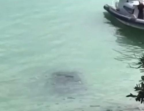 水没する女性の車を警官が助け出す05