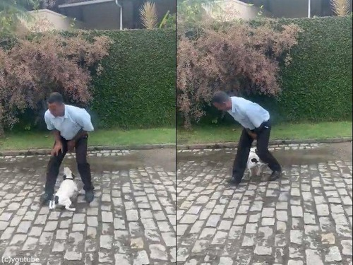 犬の横でポーズを決めた男性が驚いたこと02