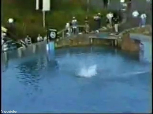 「飛込競技」のギネス記録13