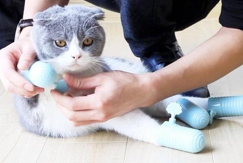 中国で売られている謎の猫グッズ03
