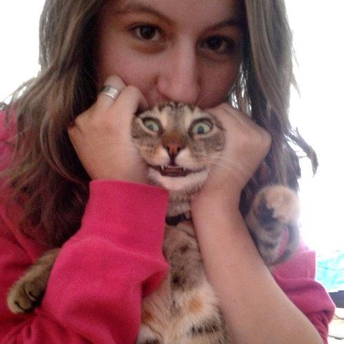 不機嫌な猫たち02