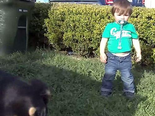 犬を師匠とする男の子01