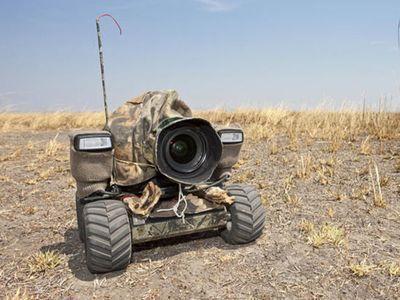 ビートルカメラ00