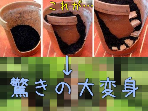 植木鉢が割れたら捨てずにこんな風にリサイクル00
