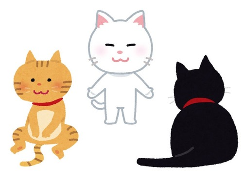 3匹の猫のエサの食べ方00
