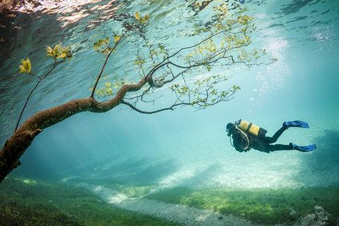 オーストリアの水中の公園03