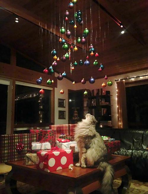 ペットからクリスマスツリーを守る戦い13