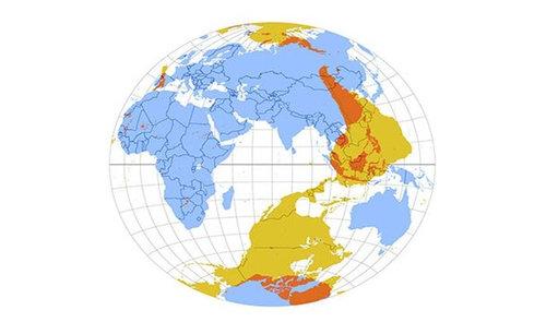 世界地図いろいろ04