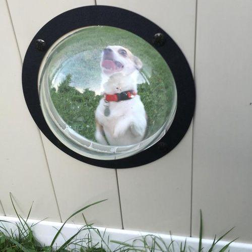 犬のためにフェンスに小窓06