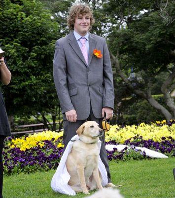 ペットと一緒に結婚式がしたい!おすすめの演出と …