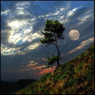 月の魔力10