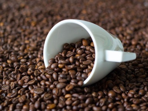 上司のミスのせいでコーヒー豆を手で分けることに