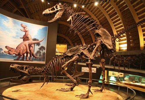 スペインの恐竜博物館01