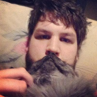 猫でヒゲ遊び17