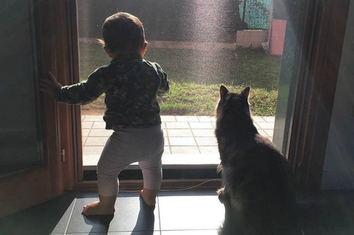 女の子を守る猫07