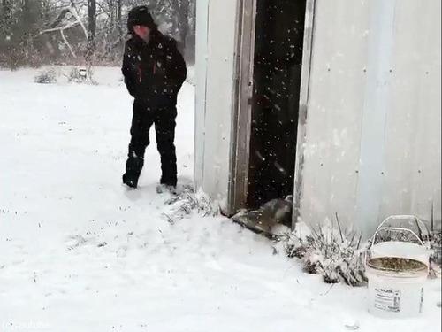 カモだって冬は寒い04