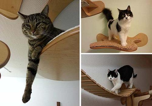 猫用のつり橋03