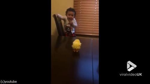 ひよこのおもちゃを怖がる赤ちゃんがじわる03