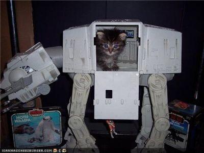 猫スターウォーズ12