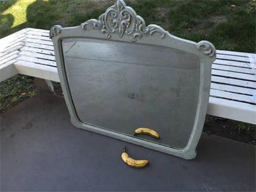 ネットで鏡の出品24