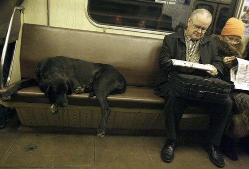 ロシアの地下鉄05