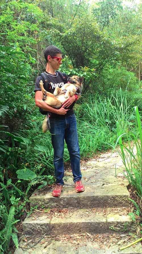 うちの犬は腰が悪いのにハイキングが大好き01
