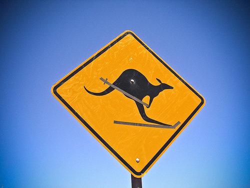 ワイルド・オーストラリア00