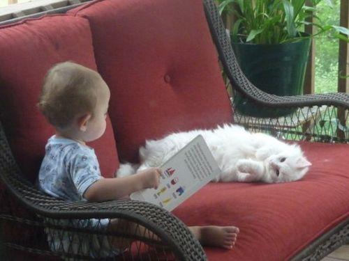 ペットと赤ちゃん15