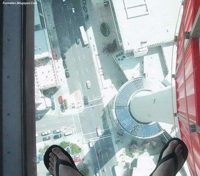 ガラス張りの高層ビルの下19